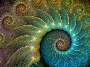 Peacock cochlea